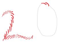 2o pattern